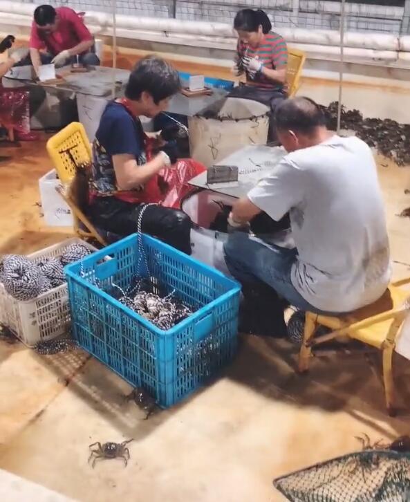 快手李四中秋卖大闸蟹到货不及时捐款25万 电商回应承诺全额赔款